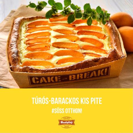 Túrós-barackos kis pite